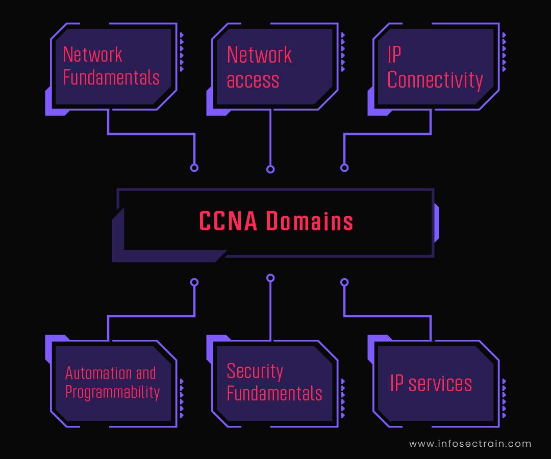 CCNA Domains